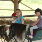 Photos mini-camp cheval été 2013 p1060781-150x150