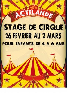 affiche stage de cirque